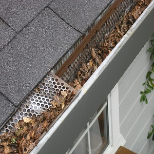Reasons To Install Gutter Mesh